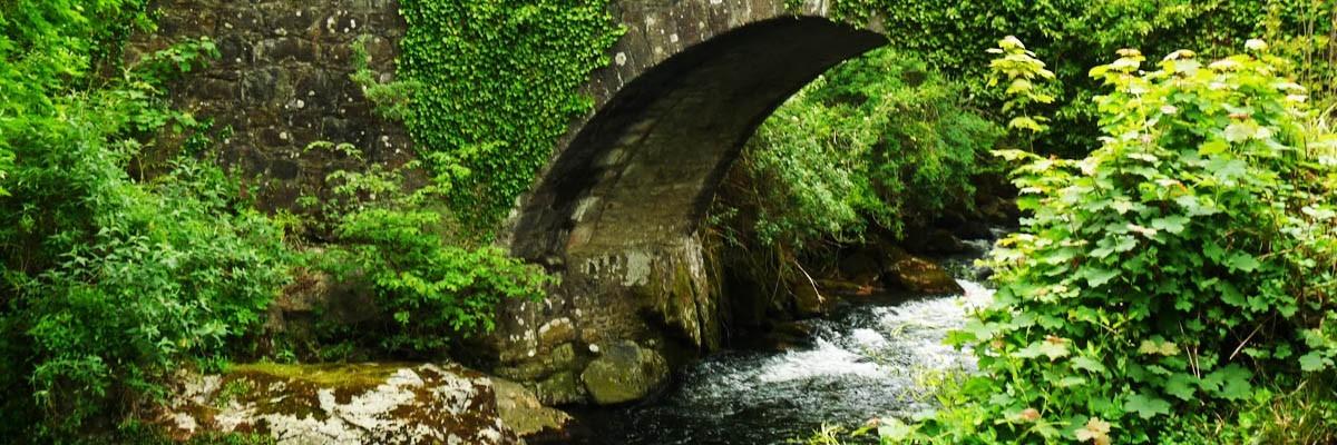 Ivybridge South Devon