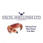 Excel Shellfish logo