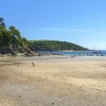 North Sands Beach Salcombe South Devon