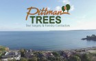 Pittman Trees - Tree Surgeons in the South Hams